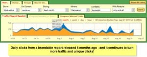 brandable report 6 months old traffic stats