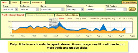 MyNAMS brandable report 6 months old traffic stats