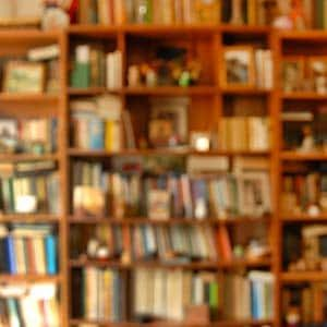 publiclibrary-outoffocus-300